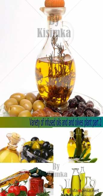 Stock Photo:Variety of infused oils and olives plant part 2