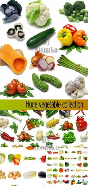 Stock Photo:Huge vegetable collection