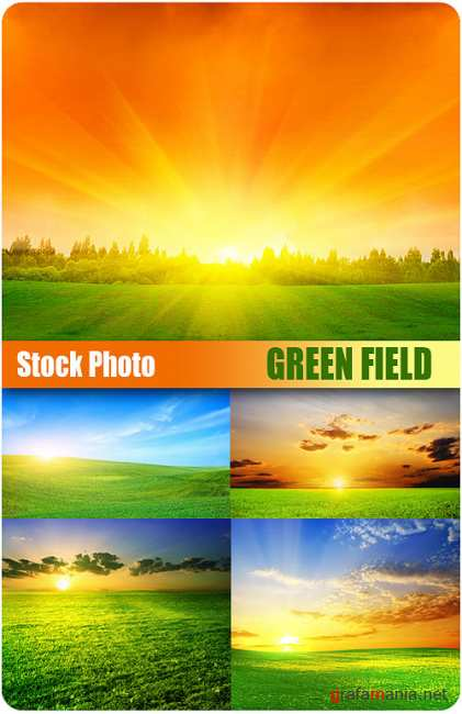 UHQ Stock Photo - Green fields