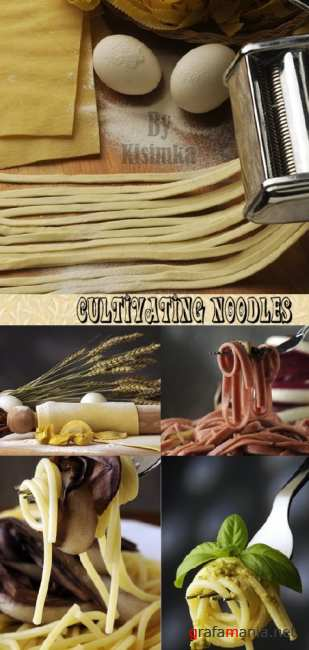Stock Photo: Cultivating noodles