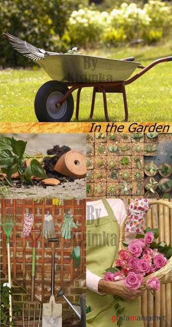Stock Photo: In the Garden