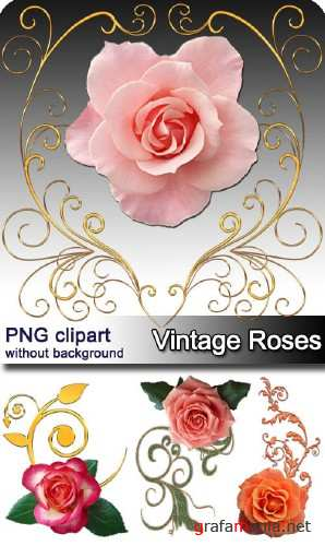��������� ���� | Vintage roses (10 PNG clipart)