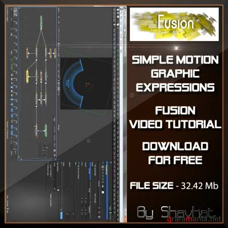 Simple Motion Graphic Expressions / 2010 (RUS)