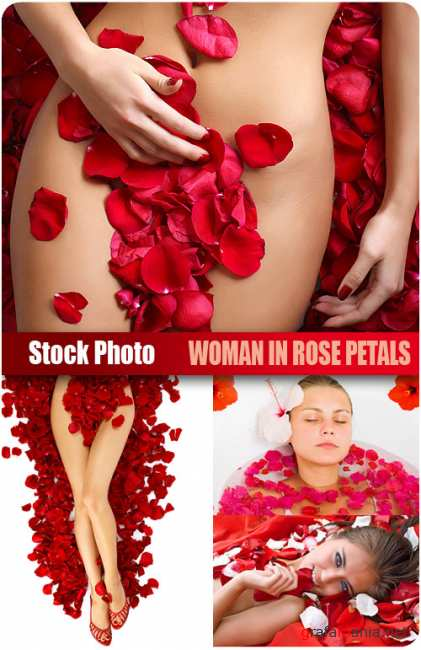 UHQ Stock Photo - Woman in rose petals