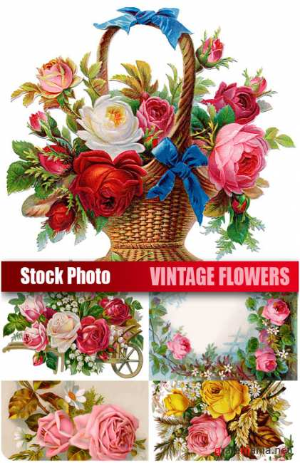 UHQ Stock Photo - Vintage flowers