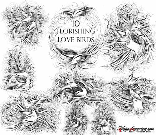 Flourishing Love Birds