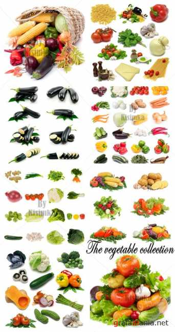 Stock Photo: The vegetable collection