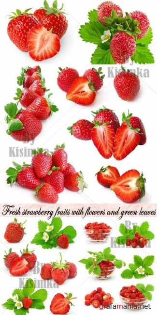 Fresh strawberry fruits with flowers and green leaves