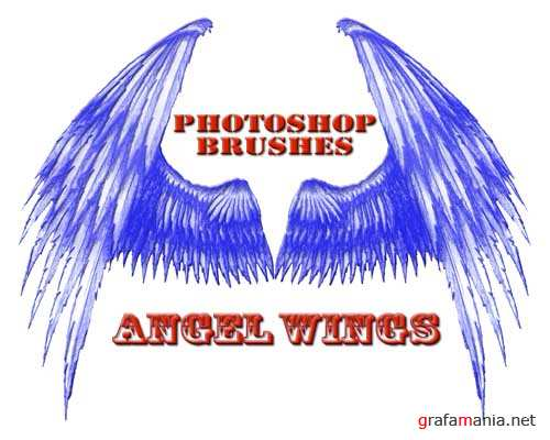 "Brushes ""Angel Wings"""