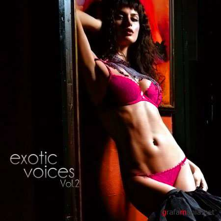 VA-Exotic Voices Vol.2 (October 2010)