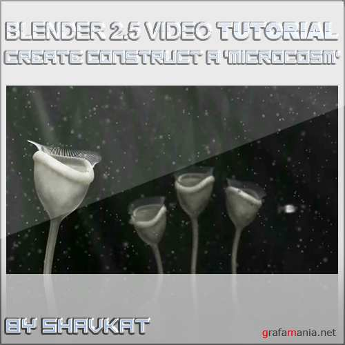 Construct a 'Microcosm' Using Blender 2.5 – Modeling & Rigging
