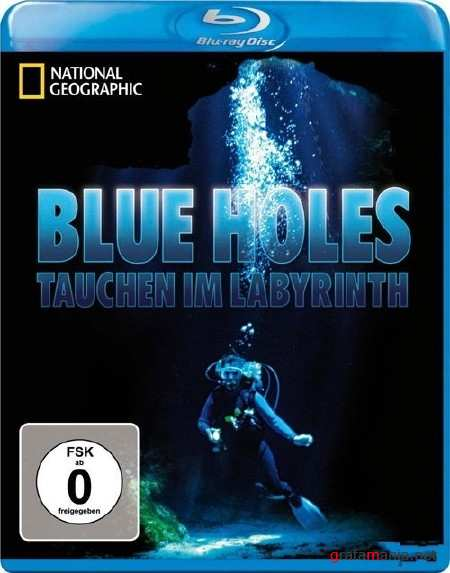 Diving the Labyrinth (2010) Blu-ray 1080i
