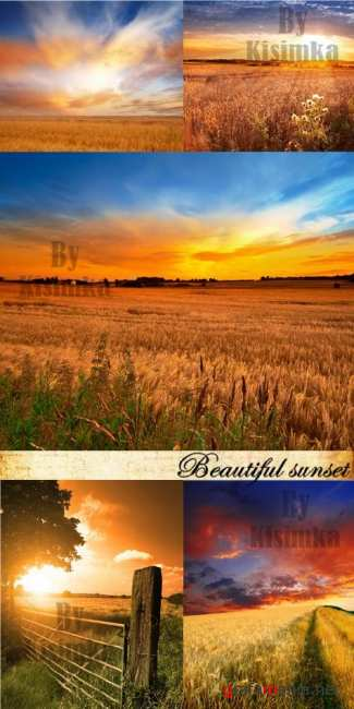 Stock Photo: Beautiful sunset
