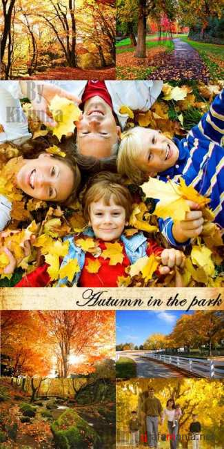 Stock Photo: Autumn in the park