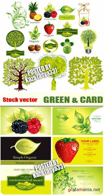 Green & cards
