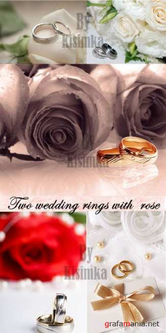 Stock Photo: Two wedding rings with rose