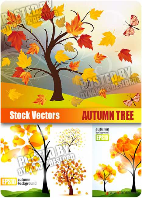 Stock Vectors - Autumn Tree