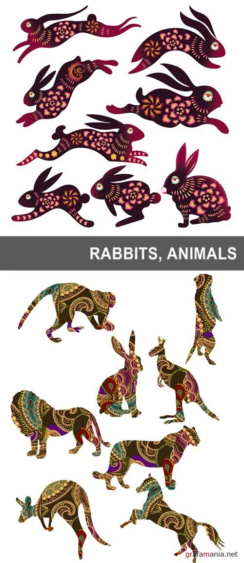 Rabbits, animals