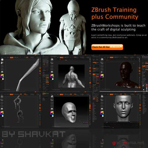 Comprehensive Introduction to ZBrush 4 (2010)