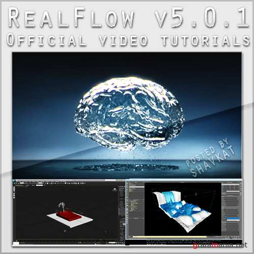 RealFlow v5.0.1 + RenderKit 2.0 64 bit + Official video tutorials with 3Ds MAX