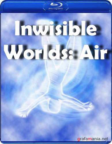 ��������� ����: ������ / Inwisible Worlds: Air (2010) HDTVRip