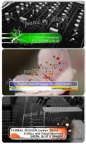 Footage for AE: Floral Design LOWER THIRD pack