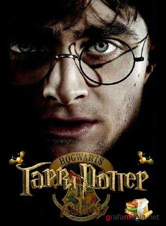 Harry Potter ��������� (Rus/RePack �� R.G. ReCoding/2010)