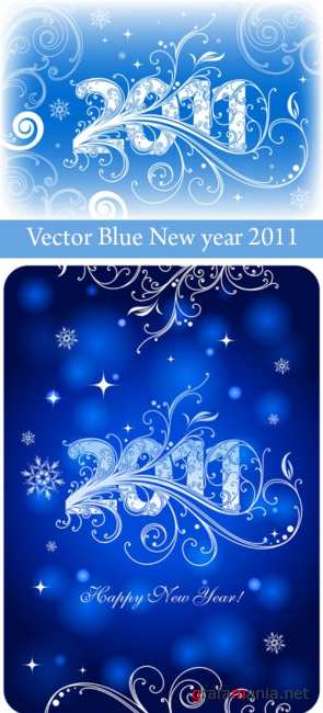 Vector Blue New year 2011