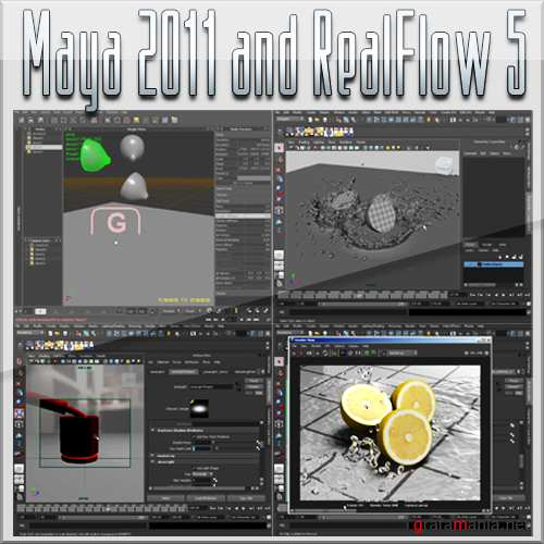 Digital Tutors - Pipeline Integration with Maya 2011 and RealFlow 5