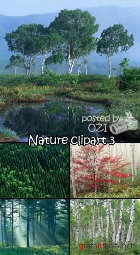 Nature clipart 3