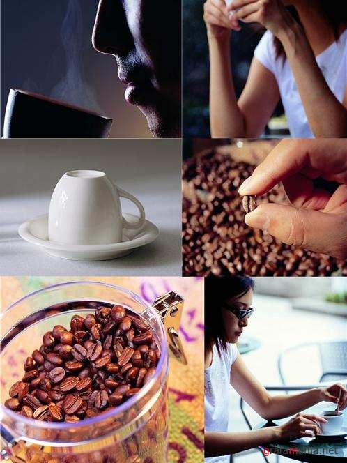 Coffee - Stock Photos