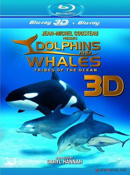 Дельфины и киты 3D / Dolphins and Whales 3D: Tribes of the Ocean (2008) Blu-ray 3D 1080p