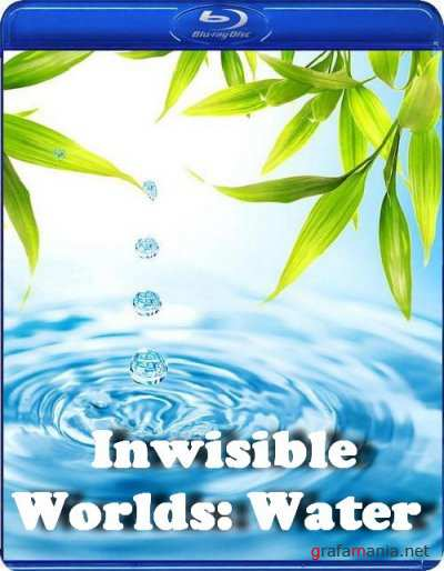 ��������� ����: ���� / Inwisible Worlds: Water (2010) HDTVRip 720p