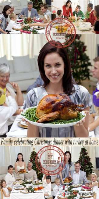 Stock Photo: Family celebrating Christmas dinner with turkey at home