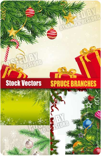 Stock Vectors - Spruce branches