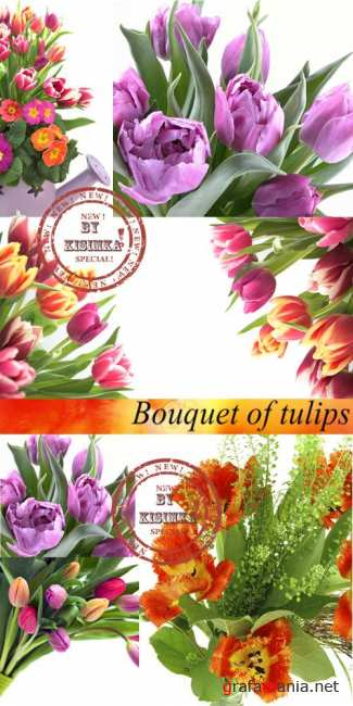 Stock Photo: Bouquet of tulips