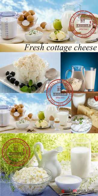 Stock Photo: Fresh cottage cheese