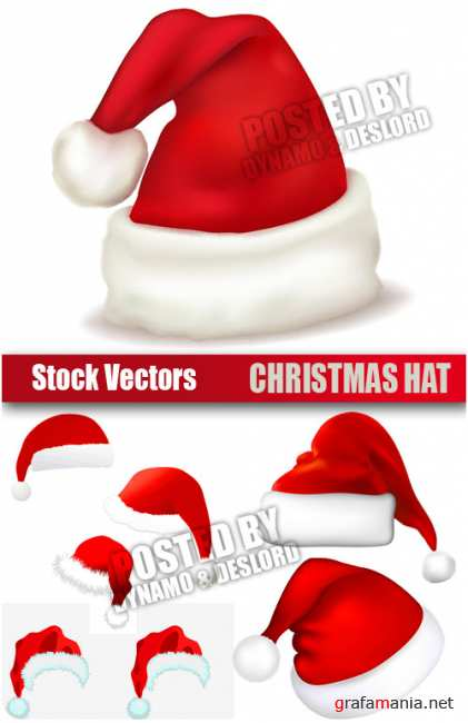 Stock Vectors - Christmas Hat