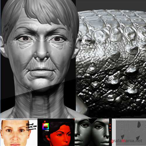ZbrushWorkshops - Sculpting Realistic Skin & Scales (2010, ENG)