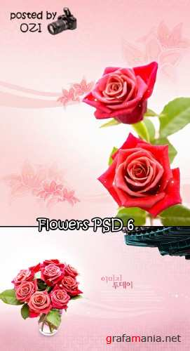 Flowers backgrounds PSD 6