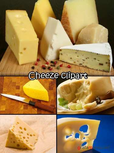 Cheeze clipart