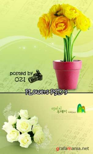 Flowers backgrounds PSD 9