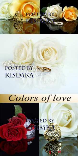 Stock Photo: Colors of love