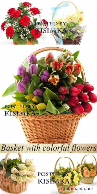 Stock Photo: Basket with colorful flowers