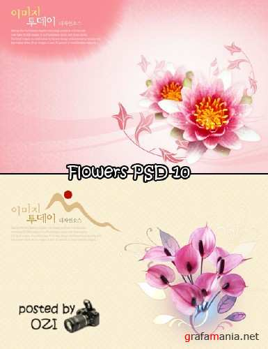 Flowers backgrounds PSD 10