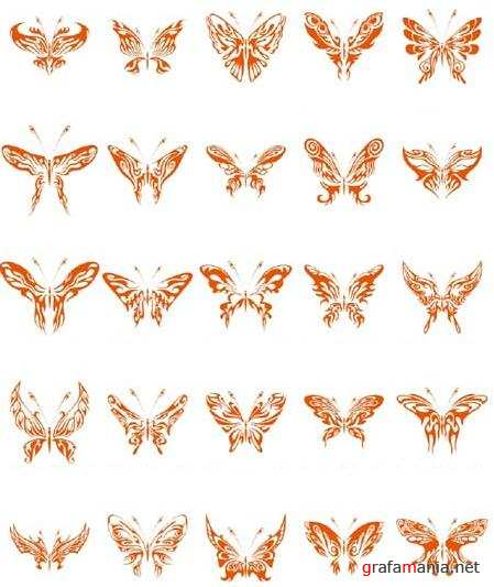 Beautiful Butterfly Vector Collection