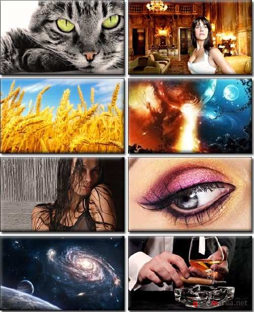 Full HD Wallpapers Pack (69)