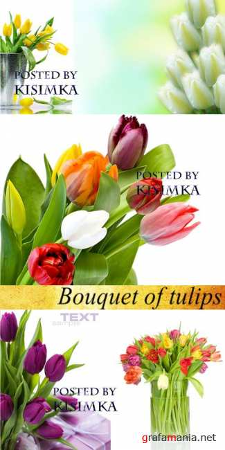 Stock Photo: Bouquet of tulips 2