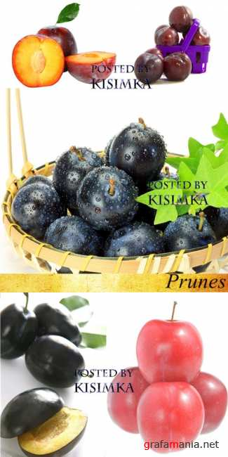 Сливы  Stock Photo: Prunes
