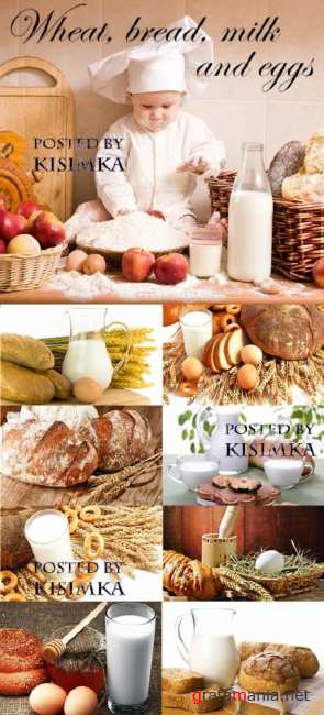 Пшеница, хлеб, молоко и яйца  Stock Photo: Wheat, bread, milk and eggs